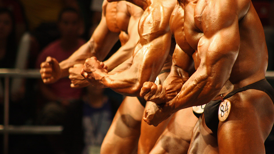 12-week exercise program significantly improved testosterone levels in overweight, obese men