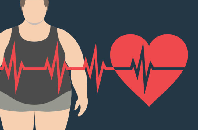 Obesity: The key role of a brain protein revealed